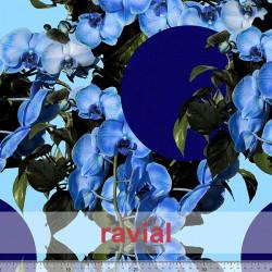 KIRA. Soft satin fabric with floral and polka dot print.