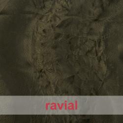 ANIMALIA BALBOA. Short fur fabric.
