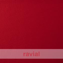 TANIA. Plain spandex fabric. Winter item.